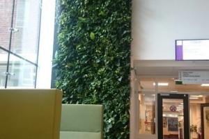 NextGen-Living-Walls-195-576x1024